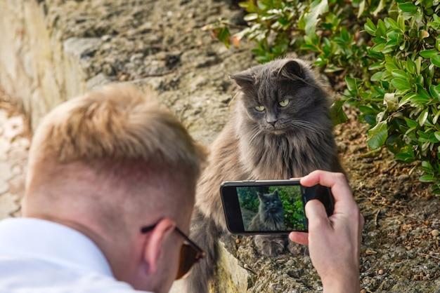 男は彼の電話で面白いホームレス猫の写真を撮ります
