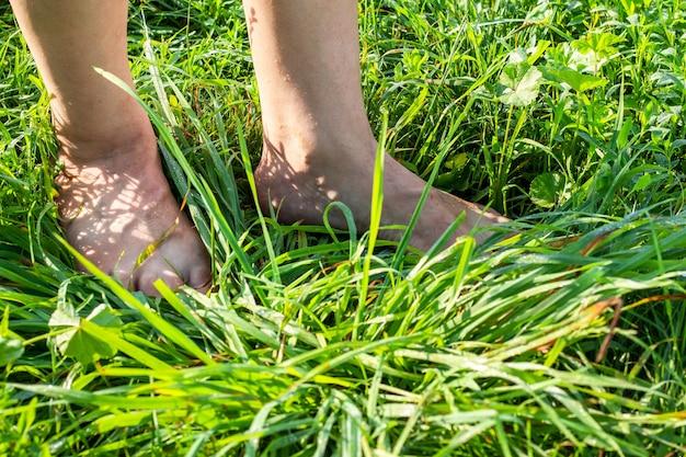 晴れた朝、濡れた草の上を歩く男