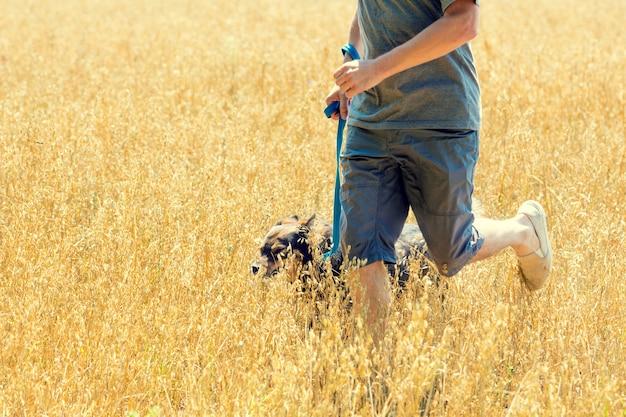 Мужчина с собакой на поводке летом бежит по овсяному полю