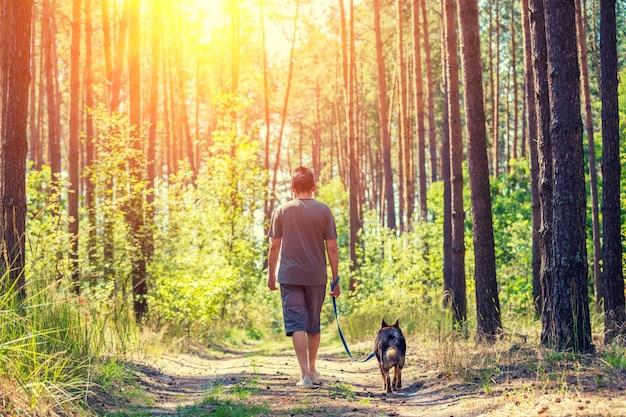 Мужчина с собакой на поводке идет по грунтовой дороге в лесу