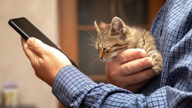 手に携帯電話を持っている男は、彼のもう一方の手に小さなかわいい子猫を持っています