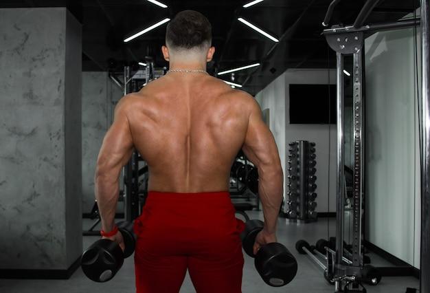 大きな筋肉を持つ男がジムでウェイトリフティングをしている。元気いっぱいのアスリートが、重量級のシミュレーターでスポーツに参加します。スポーツ演習。