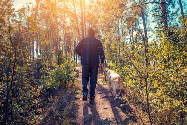 Мужчина с собакой лабрадора-ретривера гуляет в лесу осенью