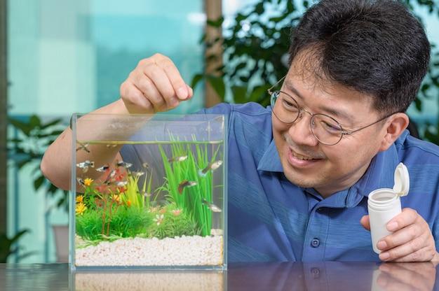 Азиатский мужчина средних лет, который кормит гуппи, выращенных им в небольшой аквариуме.