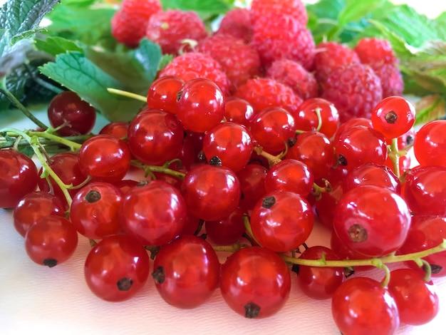 흰색 배경에 잘 익은 과일과 열매의 혼합물. 라즈베리, 건포도.