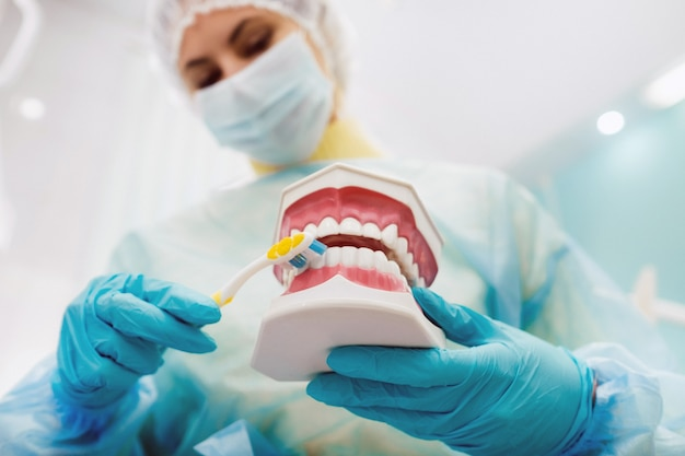 치과 의사의 손에 치아와 칫솔이 있는 인간 턱의 모델