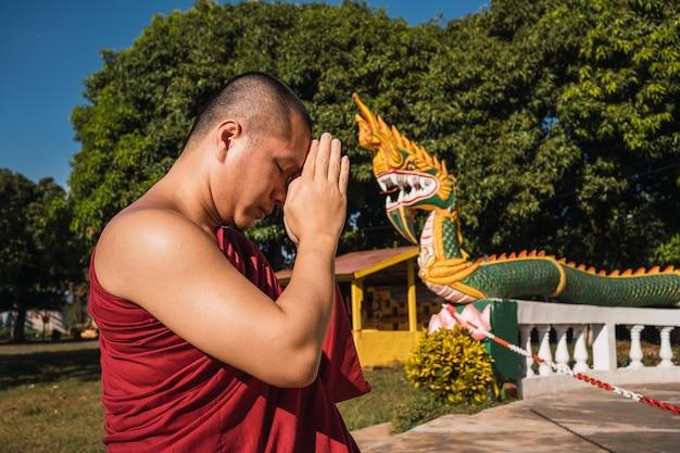 Монах поклоняется и медитирует перед золотым буддой в рамках буддийской деятельности.