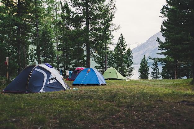 호수와 산을 배경으로 숲속의 풀밭에 서 있는 텐트의 수. 소나무 숲에서 캠핑