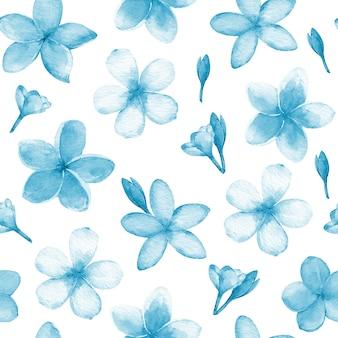 青と白のフランジパニの花の絵