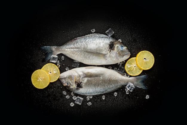黒の背景に氷と新鮮なドラド魚のペア。