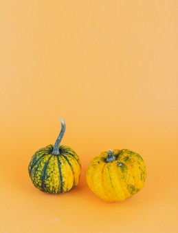 A pair of small pumpkins on yellow background