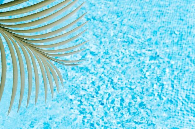 Пальмовый лист на фоне воды в бассейне концепции лета и путешествия копией пространства