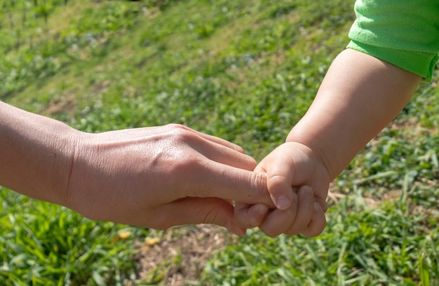 親は小さな子供の手を握っています。子供は母親の手を握っています。こどもの日のコンセプト。こどもの日、母の日