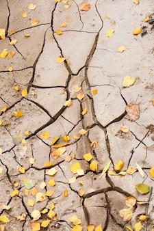 다양한 틈새로 덮인 지구의 일부 프리미엄 사진