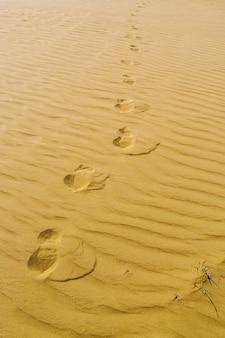 砂に足跡を残した砂漠のパッチ写真はロシアのオレンブルク地方で撮影されました