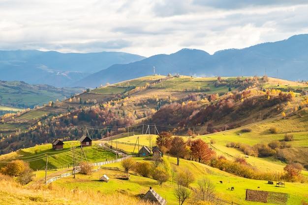 숲과 하늘을 배경으로 큰 웅덩이와 오래된 울타리가 있는 언덕 능선을 따라가는 길