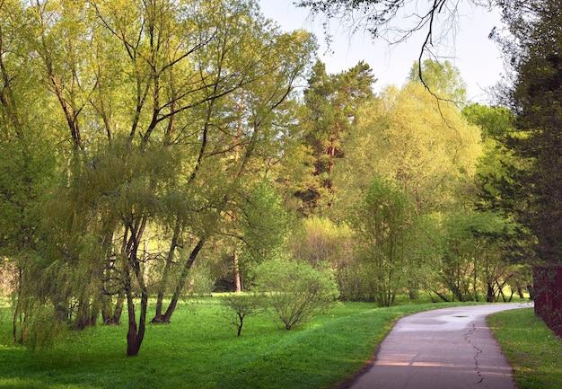 조경된 정원의 길 수목원의 신선한 봄 잎사귀가 있는 나무