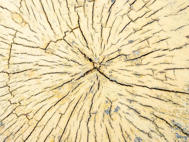 木の黄色い丸太のカットの亀裂のパターン