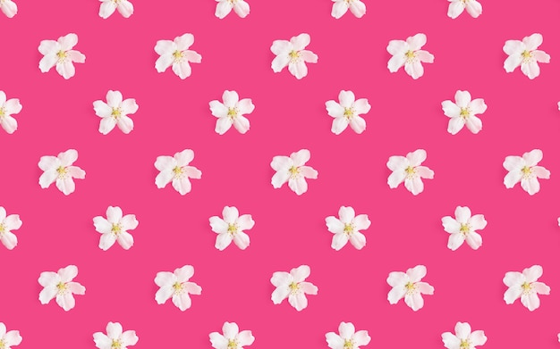 明るいピンクの背景にリンゴの木の白い花のパターン。
