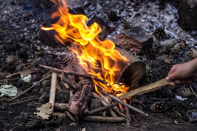 Человек разводит костер на открытом воздухе в лесу для приготовления пищи и безопасности.
