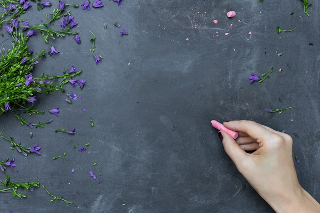 보라색 꽃 꽃잎으로 둘러싸인 분홍색 분필로 칠판에 그리는 사람