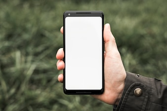 A person's hand showing cell phone with white blank screen