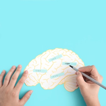 A person scrubbing the idea text on paper cutout brain against the blue background