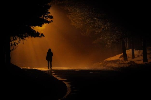 따뜻한 색으로 극적인 신비로운 장면에서 안개가 자욱한 길을 걷는 사람