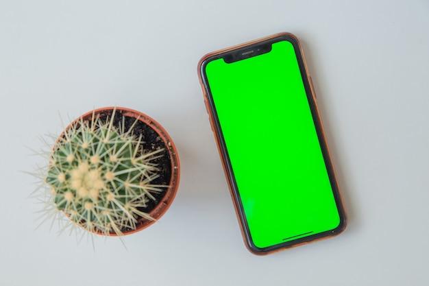 緑色の画面の電話は、白い背景の高品質の写真のサボテンの横にあります