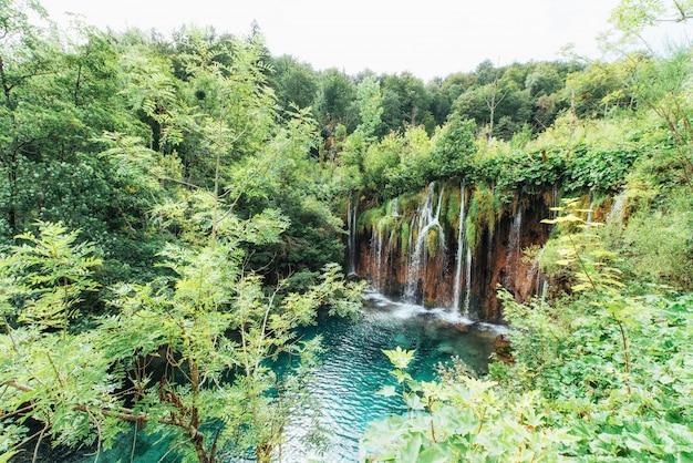 Фото рыб плавая в озере, принятое в национальный парк plitvice хорватию.