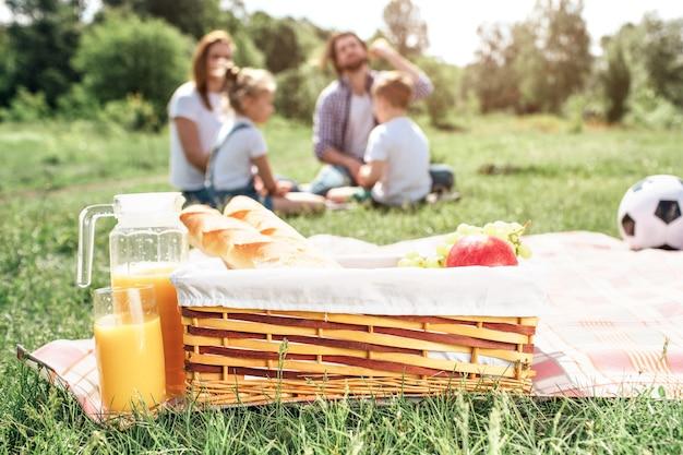 草の上の毛布の上に立っている果物とパンのバスケットの写真。そのほかにオレンジジュースの大きな壺があります。また、毛布の上にボールがあります。さらに芝生の上に座っている家族がいます
