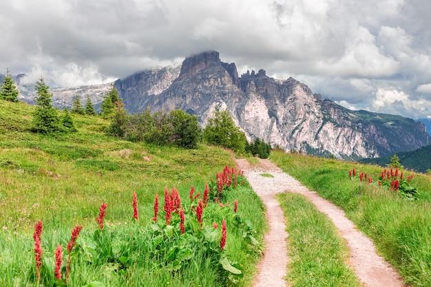 하이킹과 사이클링을 즐길 수있는 이탈리아 dolomites의 고산 초원을 지나는 그림 같은 길.