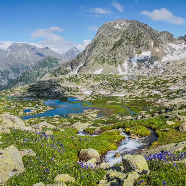 アルタイ山脈の美しい渓谷。緑の高山草原、春の花、雪、湖。