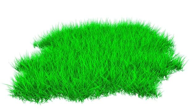 緑豊かな草が茂った草が茂った芝生の一部。 3d illustratio