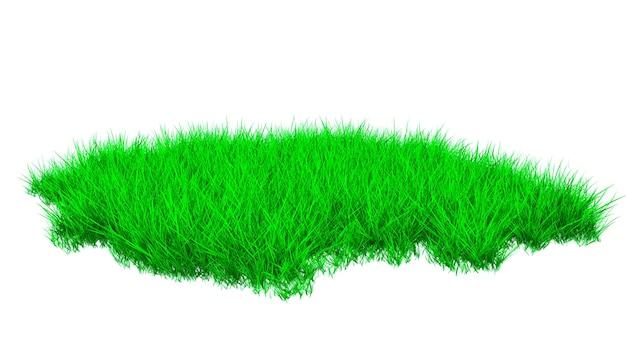 緑豊かな草が茂った草が茂った芝生の一部。