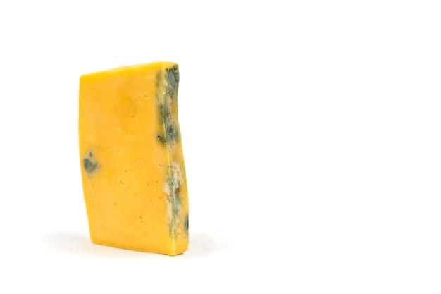 곰팡이로 덮인 썩은 치즈 조각. 요리에 적합하지 않습니다.