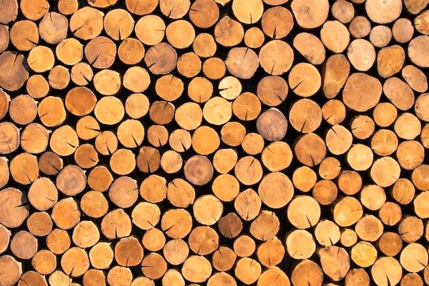 ボードに鋸で挽くための丸太の山伐採された丸太のテクスチャ材木倉庫の丸太の伐採