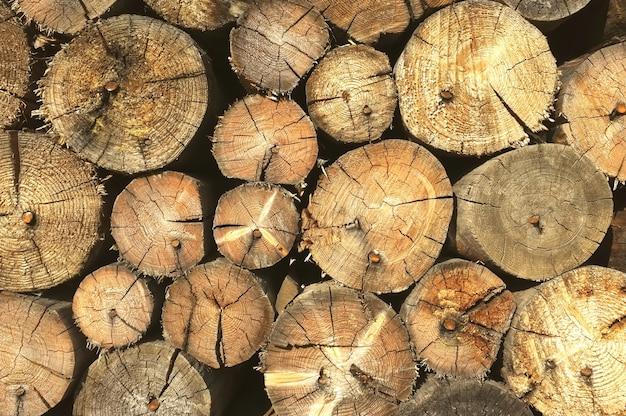 쌓인 장작 더미입니다. 잘린된 나무의 스택입니다. 자연 배경