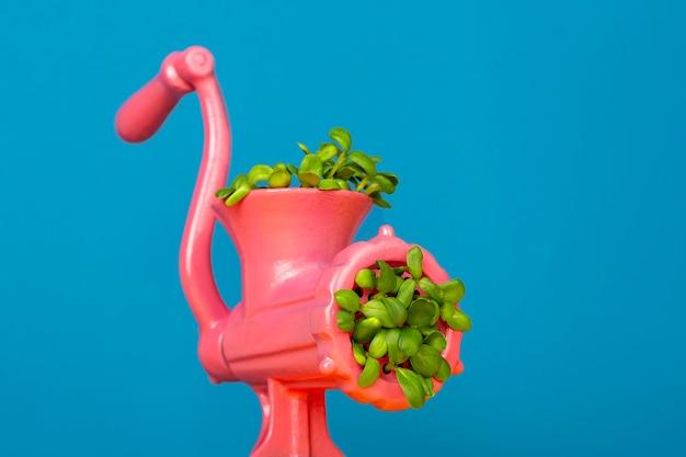 Розовая мясорубка, из которой растет зеленая трава с листьями вегетарианство и экология