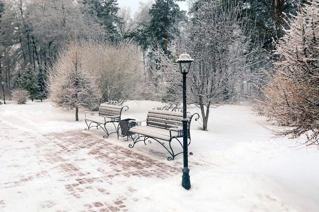 겨울 공원 나무 벤치와 나무 배경에 등불에서 휴식 장소