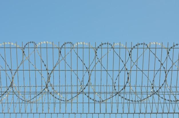 가시 철사가 배경 푸른 하늘에 있습니다.