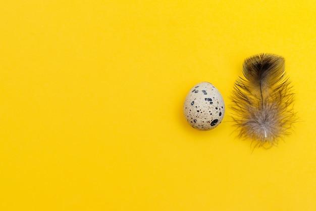 노란색 벽에 메추라기 알과 메추라기 깃털 행복 한 부활절 평평하다.