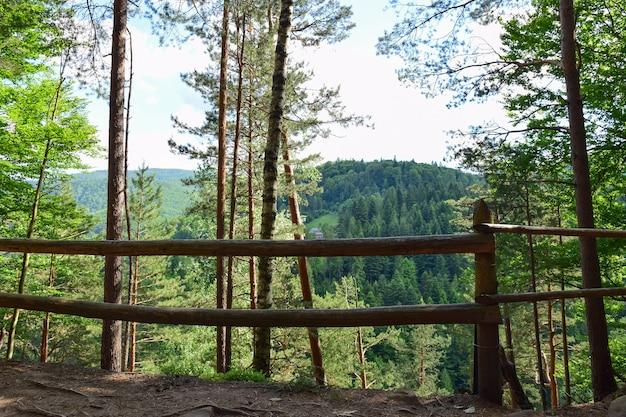 木々が生い茂った崖の上の丸太の手すり。それらの後ろには山の間の谷があります。夏に撮影された山の観光ルートからの写真。