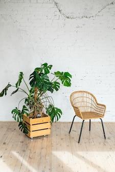大きな鉢植えの植物が付いている白いレンガの壁に籐の籐の椅子。モダンな石レンガの壁の空のリビングルーム。