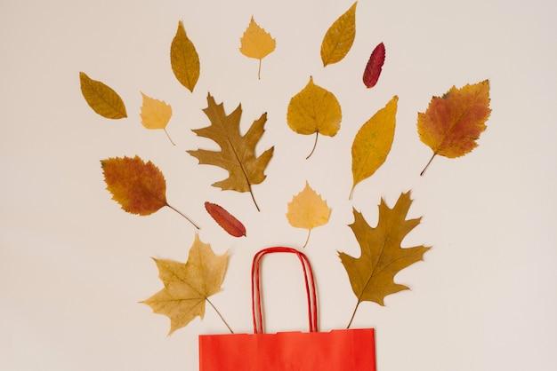 秋の紅葉が覗く赤い紙の買い物袋