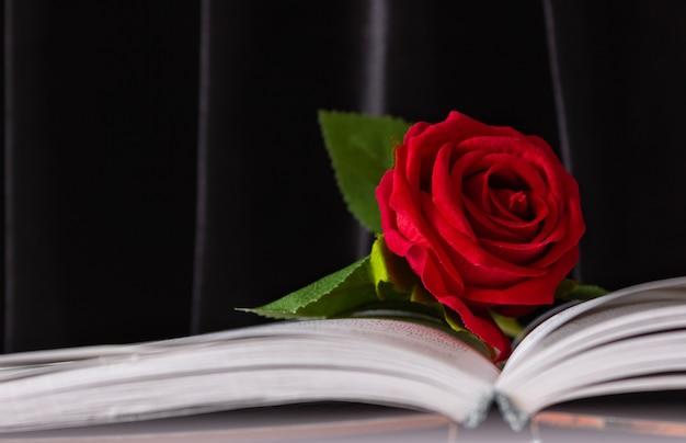 열려있는 책에 빨간 장미