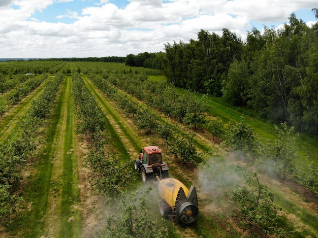 Красный трактор распыляет пестициды в яблоневом саду, опрыскивает яблоню трактором