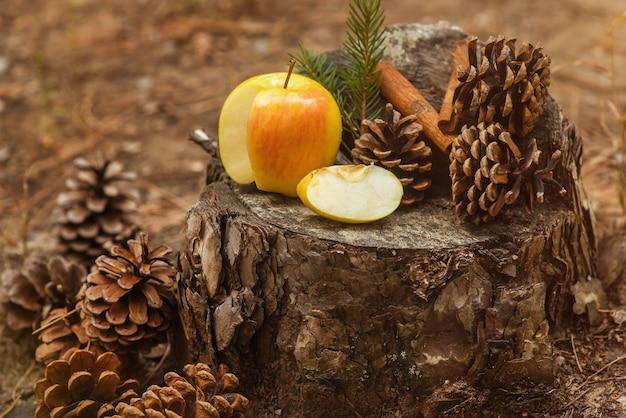 익은 황록색 사과는 가문비나무 가문비나무와 시나몬 스틱이 숲에 있는 shishex 사이의 그루터기에 놓여 있습니다. 새 해와 크리스마스 배경, 엽서입니다. 겨울 분위기입니다. 확대