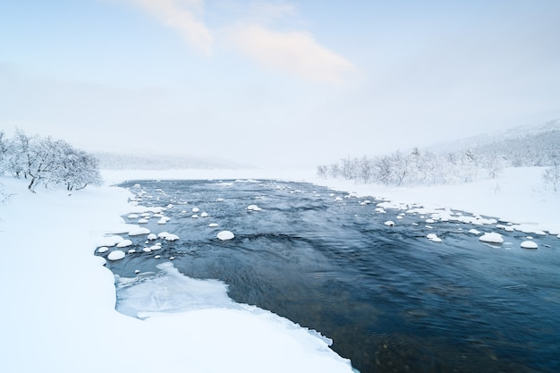 スウェーデンの冬は雪が積もった川と近くの森が雪に覆われています