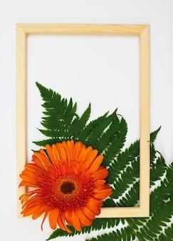 거베라 꽃과 고사리 잎의 낭만적인 구성. 흰색 바탕에 오렌지 꽃과 사진 프레임. 텍스트를 위한 빈 공간입니다.